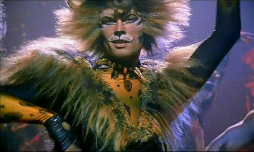 cat furry, cat costume, anthropomorphic